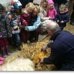 Open Farm fun for all the family