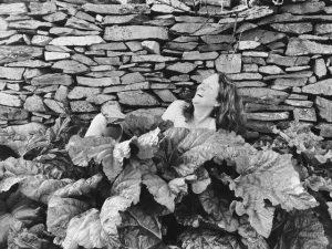 Fiona in the Rhubarb